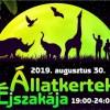 Állatkertek éjszakája 13 helyen ma éjszaka!