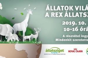 Október 5-én sztárvendégek a Rex Állatszigeten