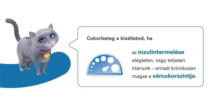 cukorbeteg_a_kisllatod_ha...