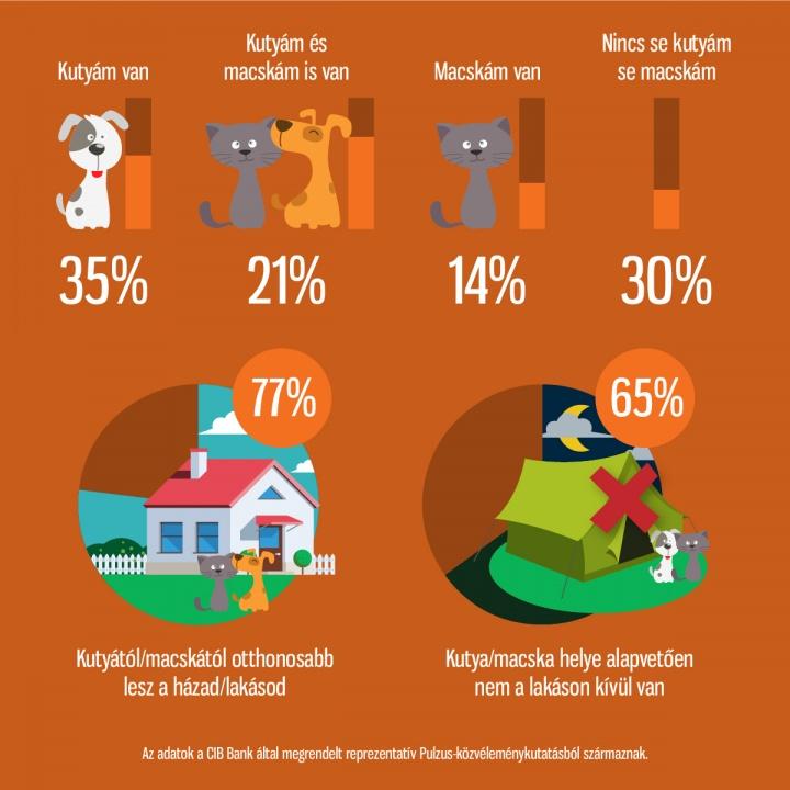 cib40_infografika