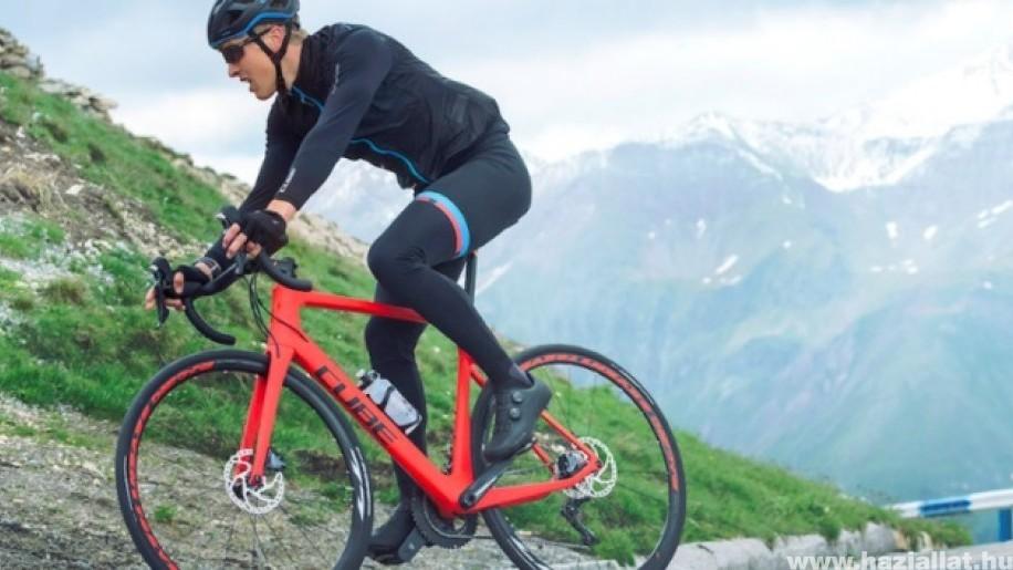 Országúti kerékpározás technikája