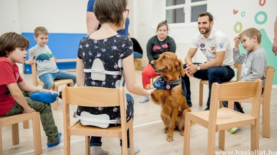 Fogyatékkal élő gyerekek kutyaterápiás foglalkozásán segített Szilágyi Áron