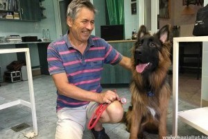 Sok állatot mentett Patakidoki, amelyekről a hagyományos orvoslás már lemondott