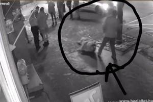 Hajtóvadászat indult a váci férfi ellen, aki brutálisan megvert egy kutyát