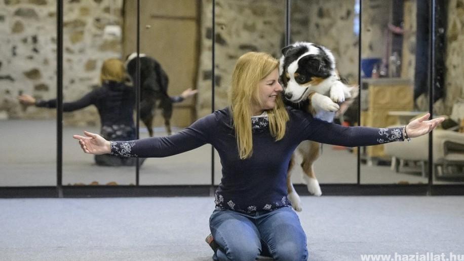 Mi az a kutya akrobatika?