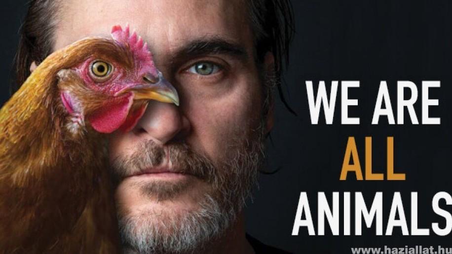 Joaquin Phoenix Oscar-díjat nyert, majd beszédet mondott az állatok jogaiért
