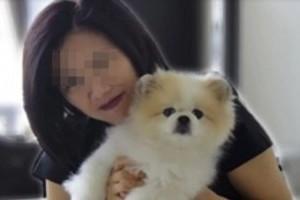 Egy kutya is a koronavírus fertőzöttek között?
