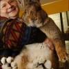 Guiness-rekord: Herman, az óriás nyúl
