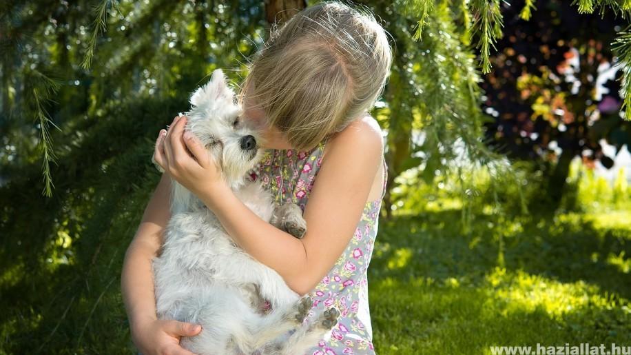 Ezekre figyelj állattartóként, ha kisgyerek is van a családban