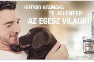 Valami, amit soha nem szabad elfelejtened, ha a kutya egészséges táplálásáról van szó!