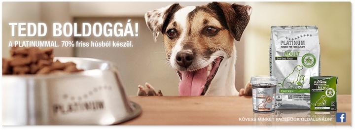 hipoallergén, kutya, kutyatáp