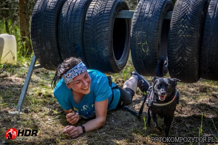 hard dog race, kutya, akadálypálya, futás, sport