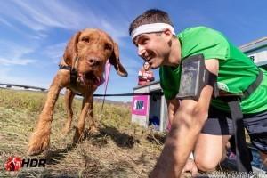 Hard Dog Race: sportolj, és szerezz életre szóló élményeket a kutyáddal!