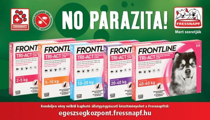 parazita, kullancs, frontline, kutya, macska, védekezés