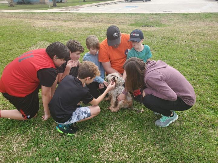 Maddie nagy hazatérése Fotó: The Forgotten Pet Advocates/Facebook