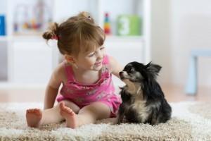Vajon mi az ideális kor egy gyermeknél, hogy kutyát kapjon? (x)