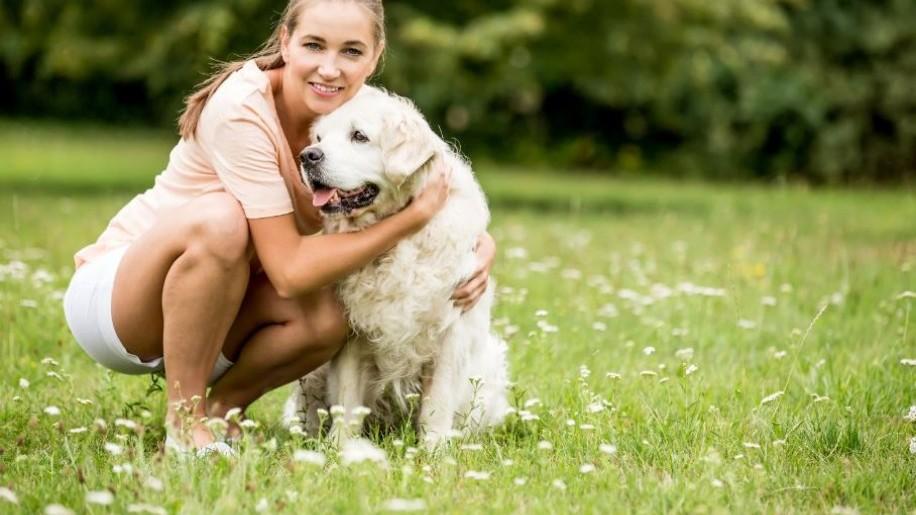 Gondoltad volna? Ezért könnyebb az életmódváltás ha van kutyád! (x)