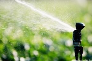 Mérsékelt vízfogyasztás az automata öntözőrendszerrel (x)