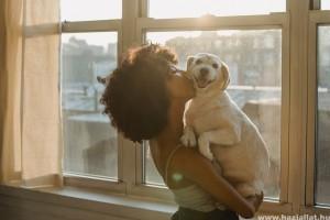 Szereti és érti a kutya, ha megpuszilod?