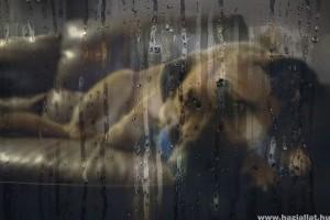 Így jelzi a kutyád, ha fél a vihartól