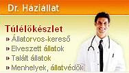 DR. HÁZIÁLLAT: KÉRDEZZ TE IS!
