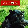 VADON MAGAZIN - 2006. OKTÓBER