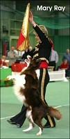 dog-dancing