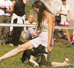 kutyas-sport