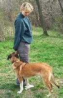 ebugatta-kutyaiskola