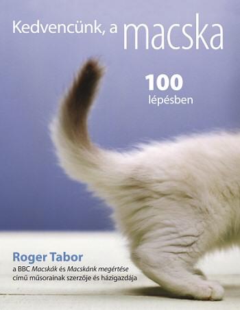 cica, macska, könyv, kedvenc