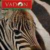 VADON MAGAZIN - 2007. FEBRUÁR