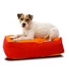 Miért kell a kutyának kutyaágyon heverésznie?