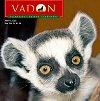 Megjelent a Vadon magazin 4. száma
