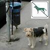 Kutyát sétáltatni tilos?