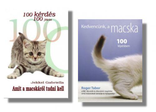 könyv, cica, macska