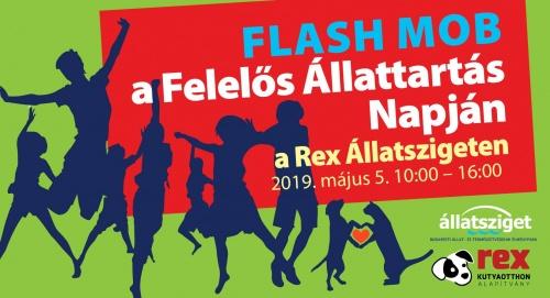 tancos_flash