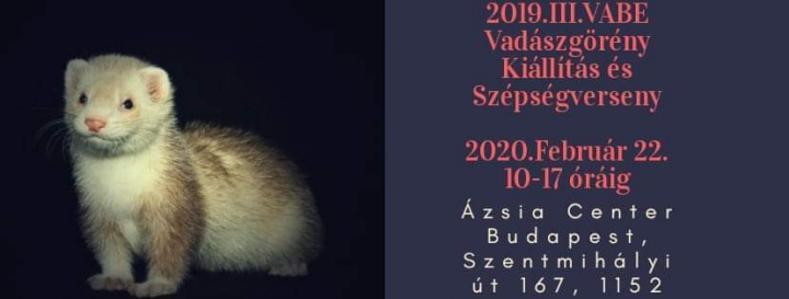 2020vabe