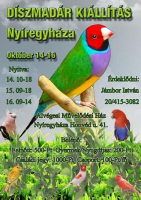 plakat2011-web480