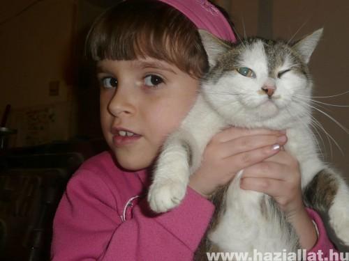 Lányom és Macskám