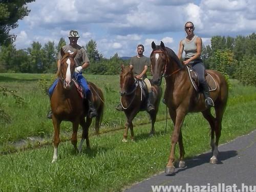 baráti lovaglás