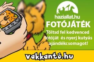 vakkant_300x200_