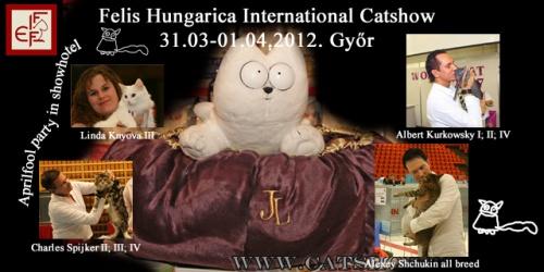 felis_hungarica_catshow_2012_gyor_hungary