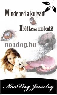 NoaDog ezüst medál kutyának