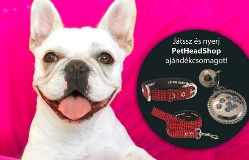 PetHead ajándékcsomag