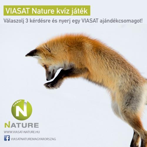 VIASAT Nature Európa Bolygó