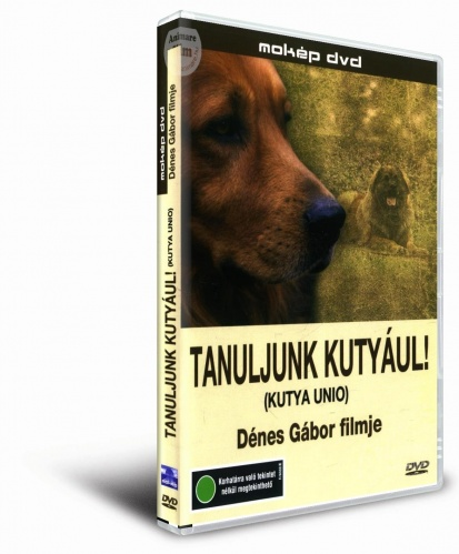 tanuljunk_kutyaul