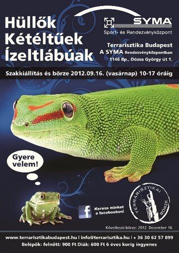 terrarisztika_borze_szeptember