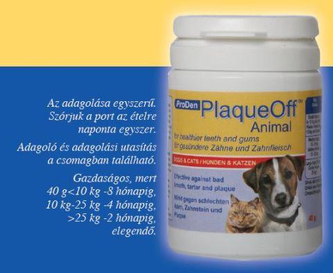 Hogyan őrizzük meg kutyánk fogának és az ínyének egészségét?