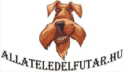 allateledelfutar-logo